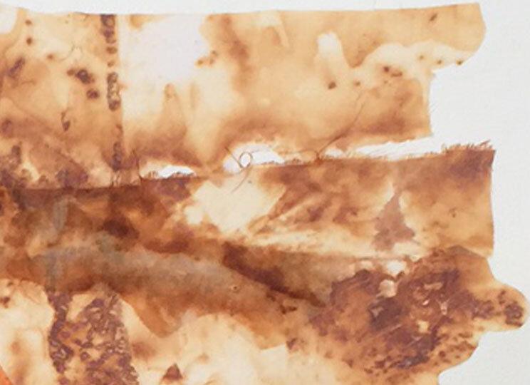 bobbibaughstudio-detail-rust-on-sheer-fabric.jpg