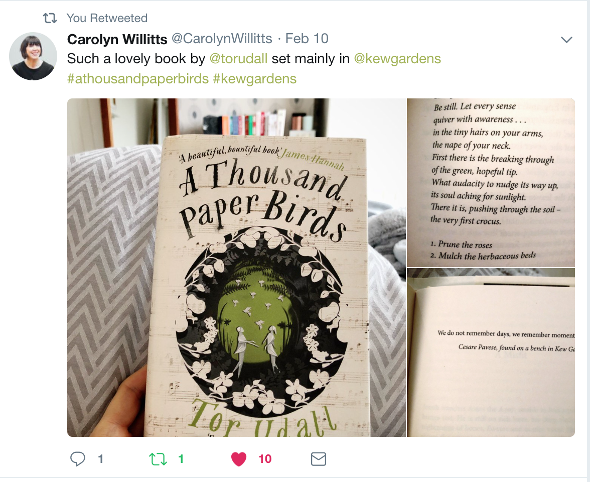 CarolynWitts.png