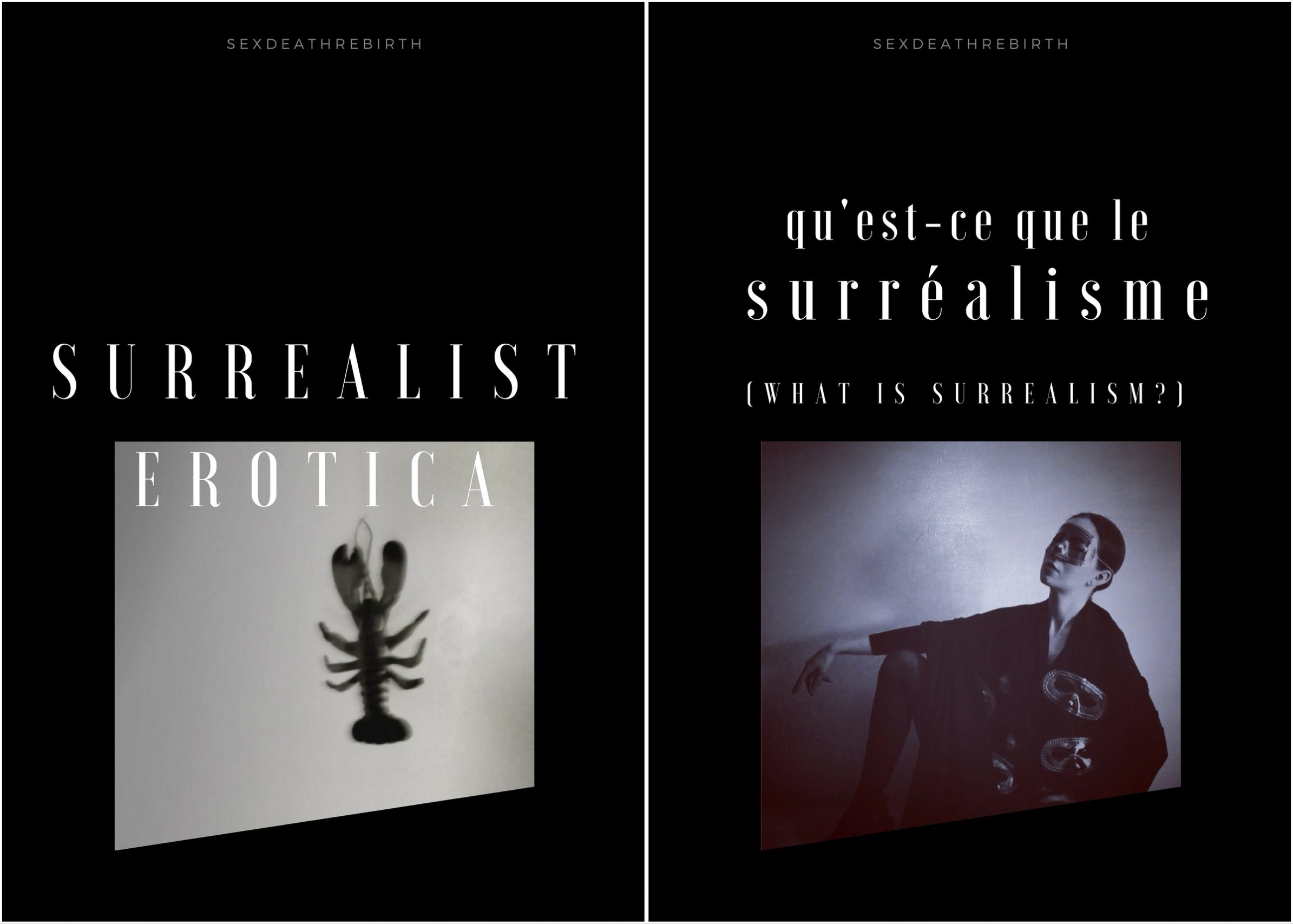 Posters for the two series:   Surrealist Erotica , the main series with the erotica films plus the extra experimental videos in the Bonus section.   What is Surrealism , a secondary subscription series that contains  only  the Bonus videos of the main series. They are generally shorter, less explicit, and more experimental.