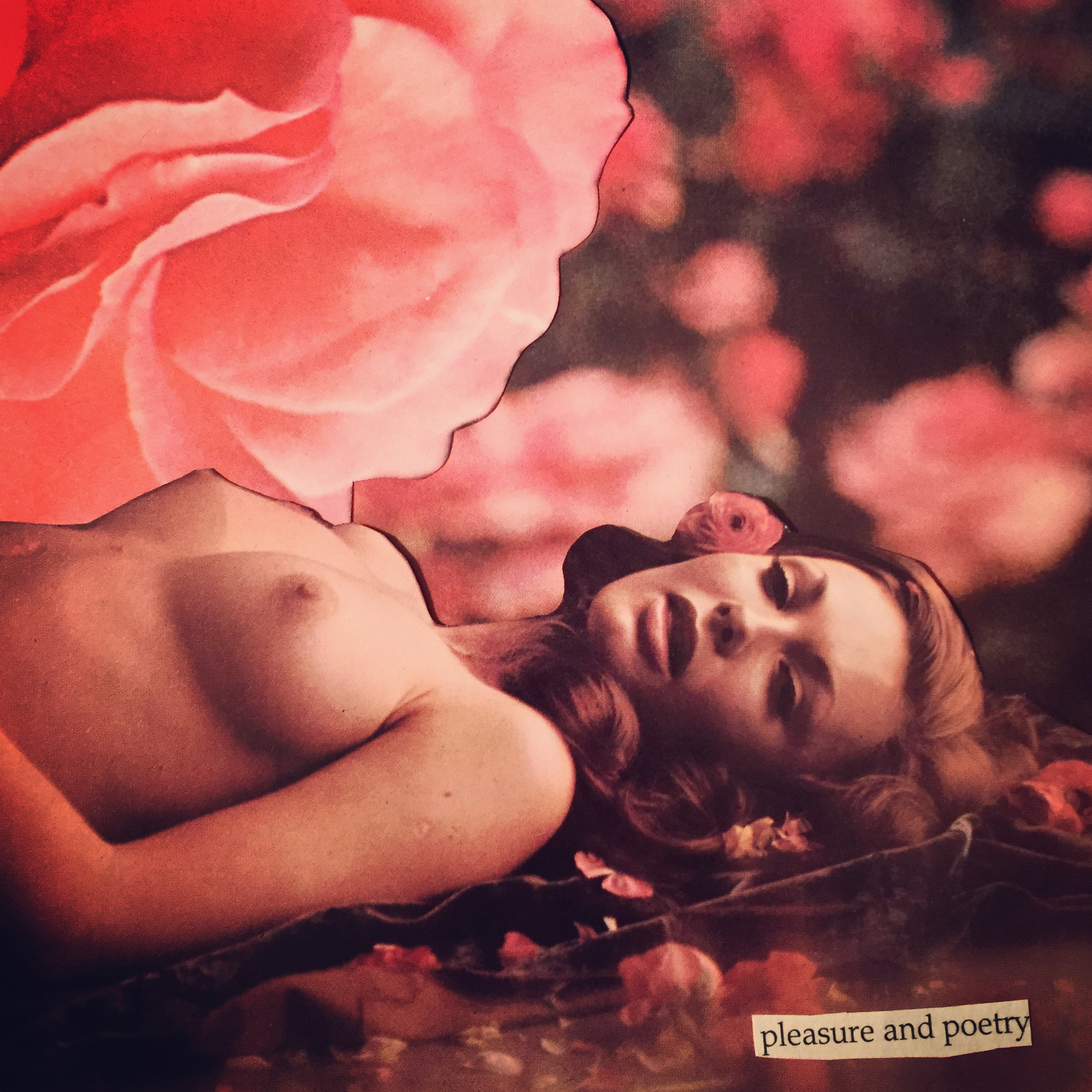 Pleasure and Poetry by Joan Pope (sexdeathrebirth)