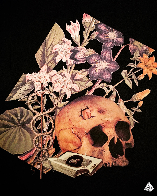 Les Fleurs du Mal #1: Au Lecteur by Joan Pope (Temple ov Saturn)