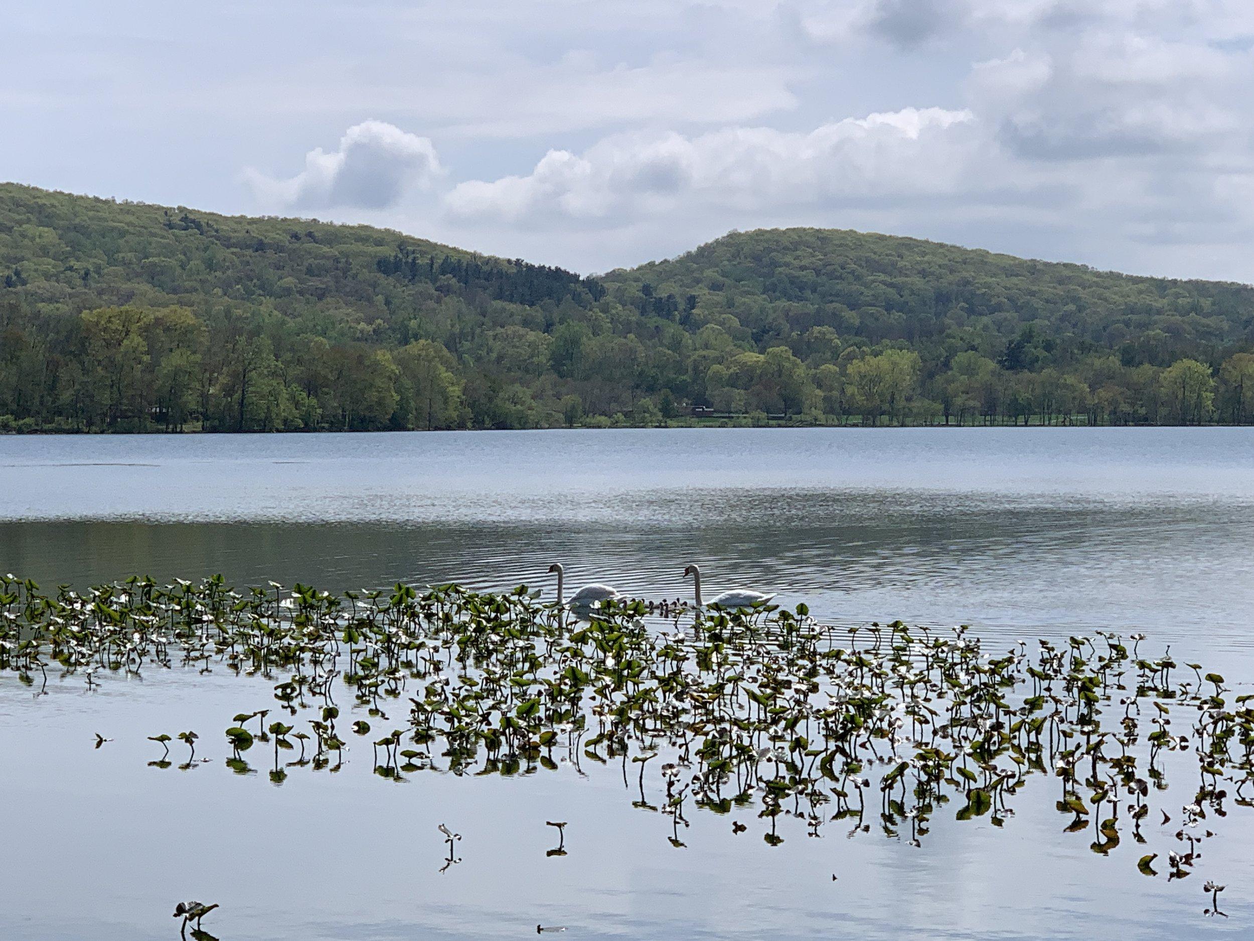 Rockland Lake