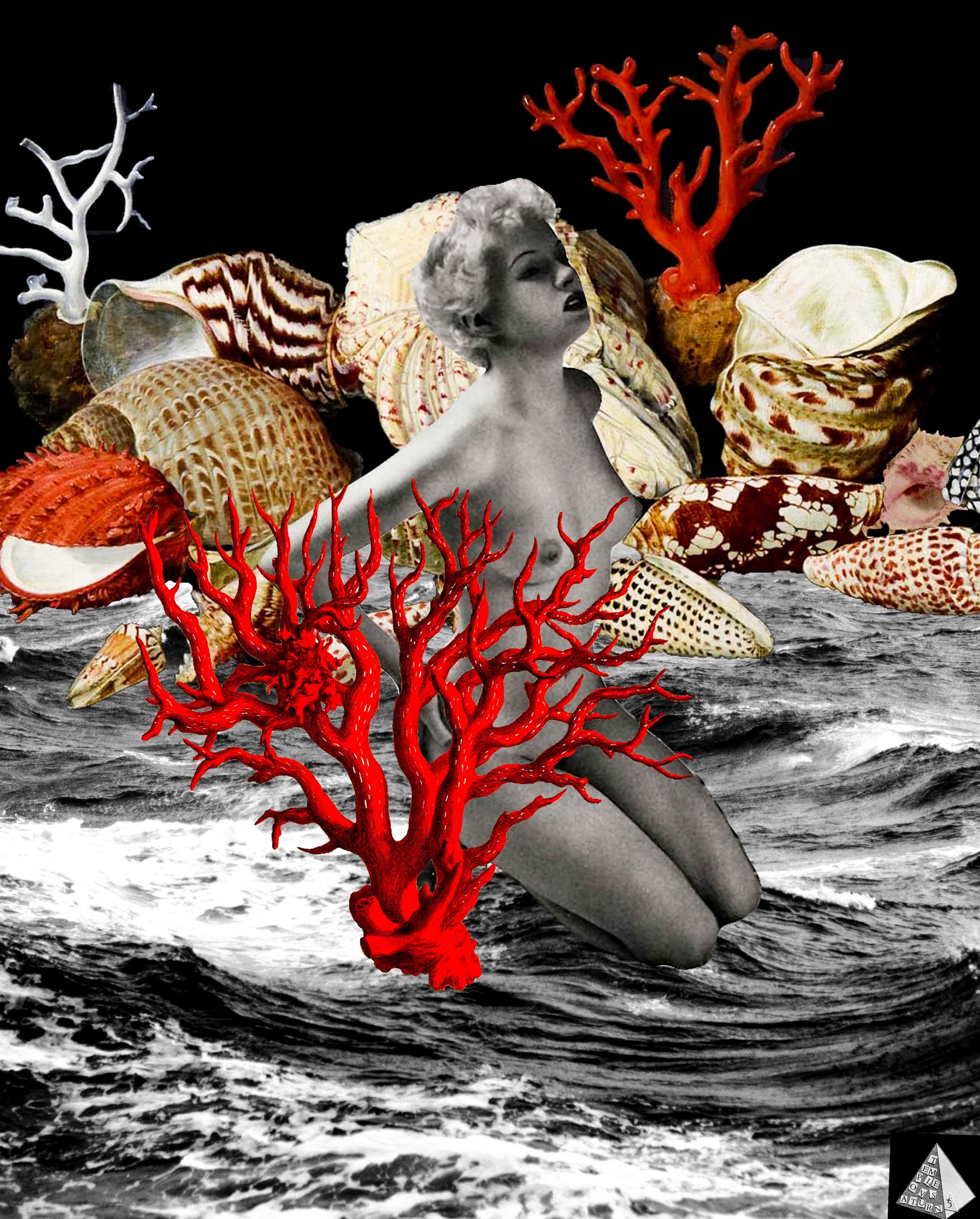 Birth of Venus by Joan Pope (Temple ov Saturn)