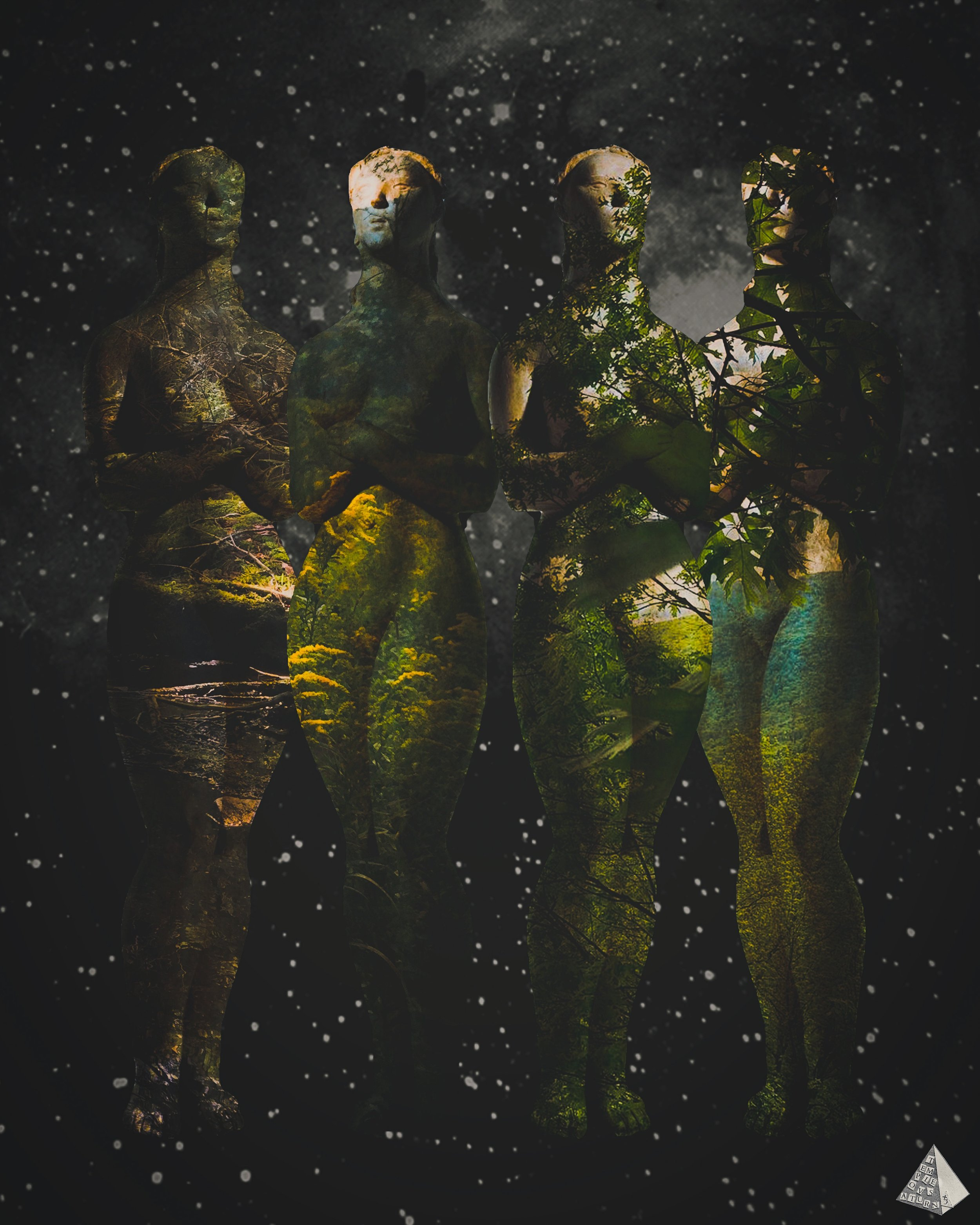 The Goddesses by Joan Pope