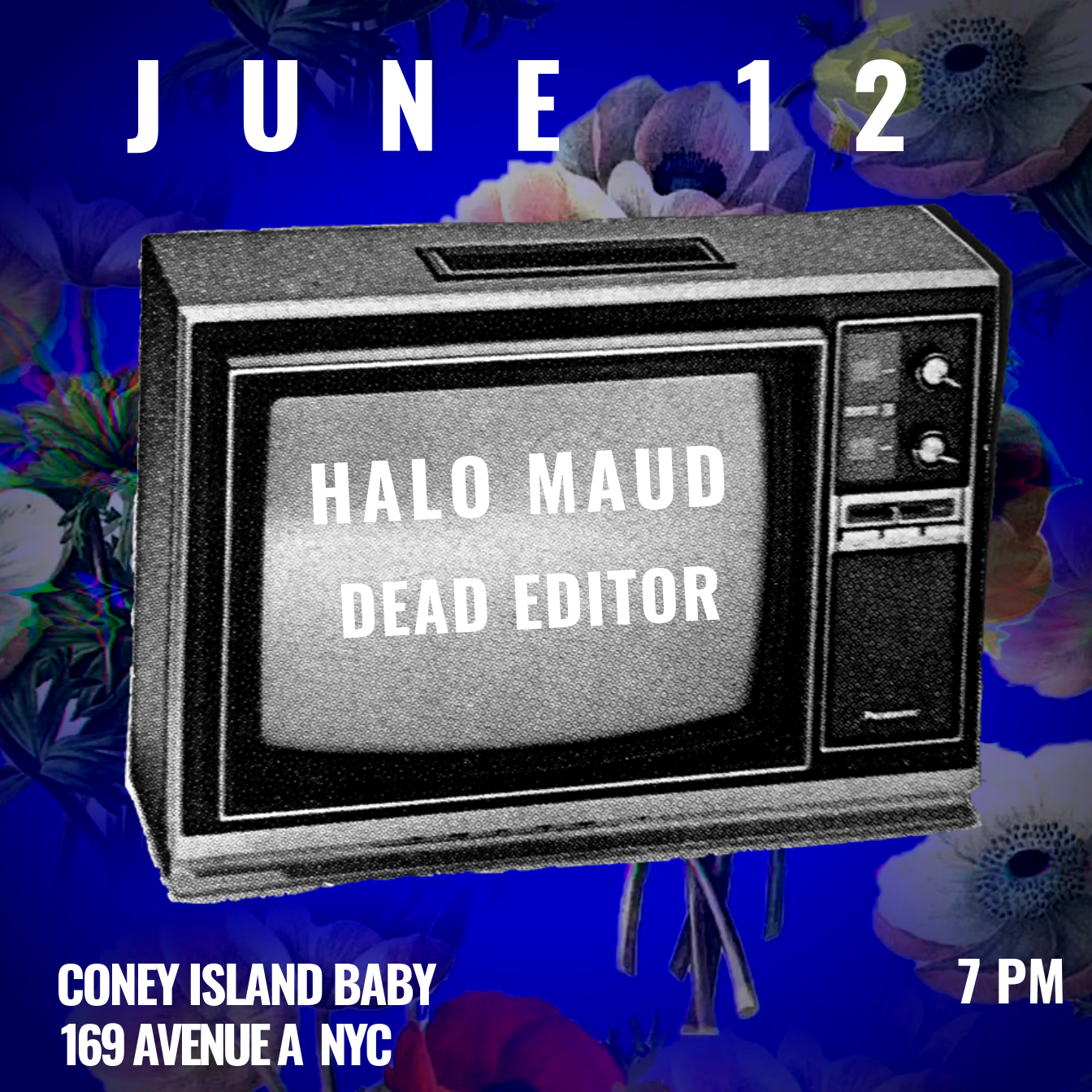 Flyer for Halo Maud and Dead Editor at Coney Island Baby