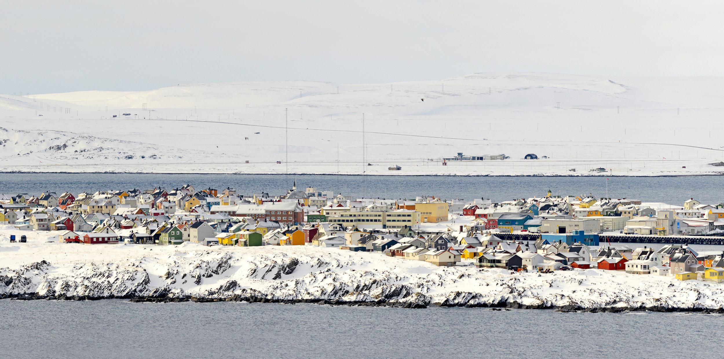 Vardø by sett fra Hornøya fuglefjell. Vardø i mars: Fuglefjellet yrer av liv, og den fargerike byen i det snøhvite arktiske landskapet må oppleves.