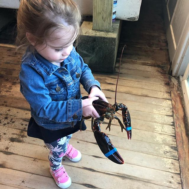 Happy 2nd birthday Grace! We love you!  #fourthgeneration #familybusiness  #oystermansdaughter
