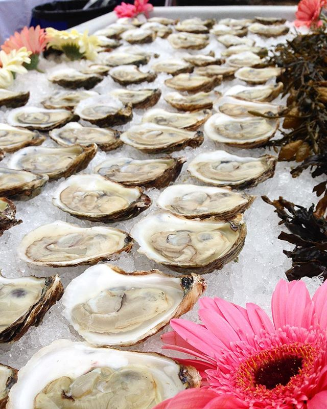 From all of us at Copps Island Oysters, happy #NationalOysterDay!