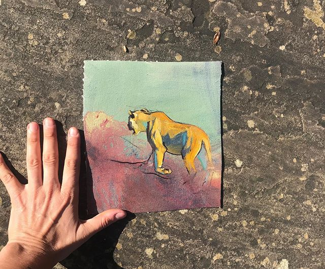 SOLD. No.227 . #sketchforwildlife . £100/100%donation to animals . @zcp_org . Lions. Lions. Lions. A photograph from the #londolozi @londolozi days with @jamotyrrell 🙏 #art #Africa #lion #love #morninglight