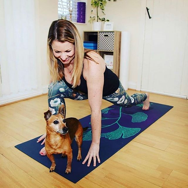 Totally lovely photo of @the_movement_specialist and her #dogyoga buddy. This yogi's motivational messages are easily as empowering as her great practice images are beautiful.  Thanks #the_movement_specialist for your constant encouragement. . #livingwell #yoga #dailypractice #motivation #botanicalprints #hampshireyoga #dailymotivation #yogacommunity #ashtanga #namaste