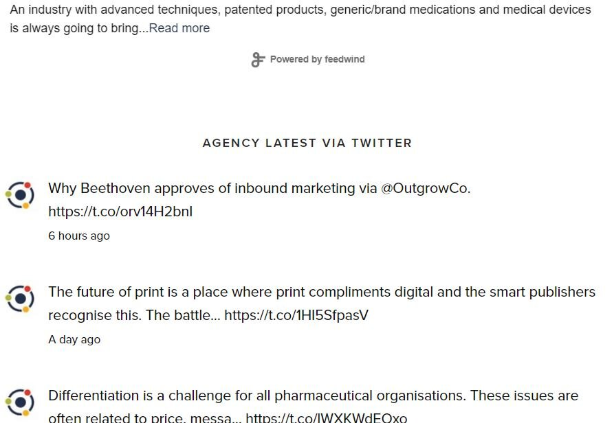 Orientation Marketing's Twitter feed present on the homepage