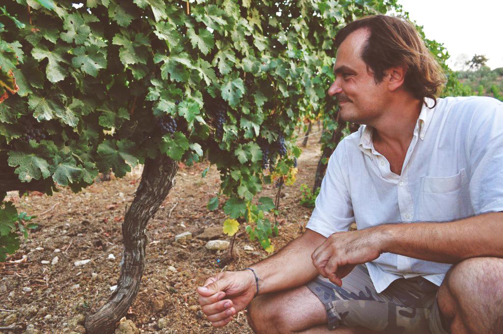 Fabrizio Forconi, nella vigna di Podere dell'Anselmo.