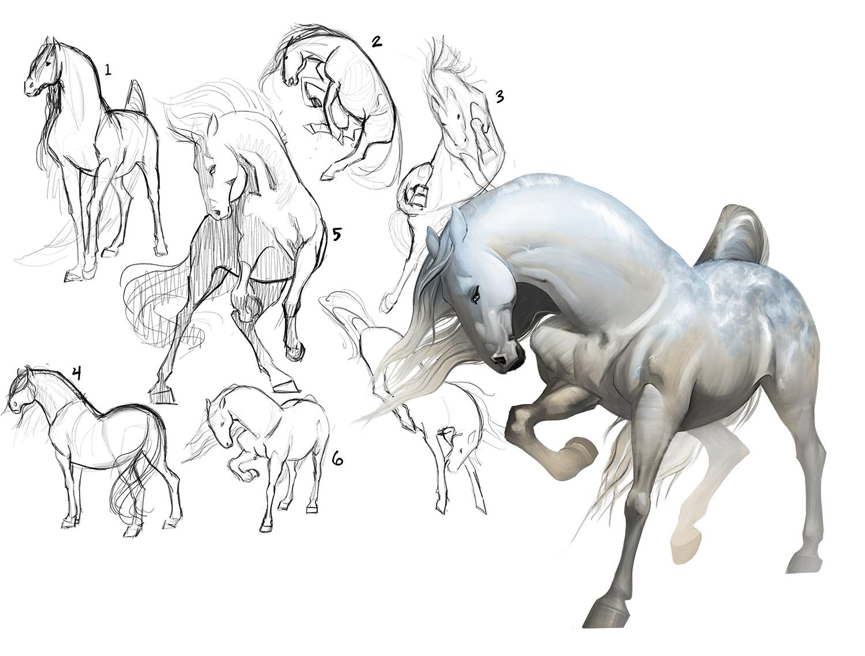 Horse2sketches2.jpg