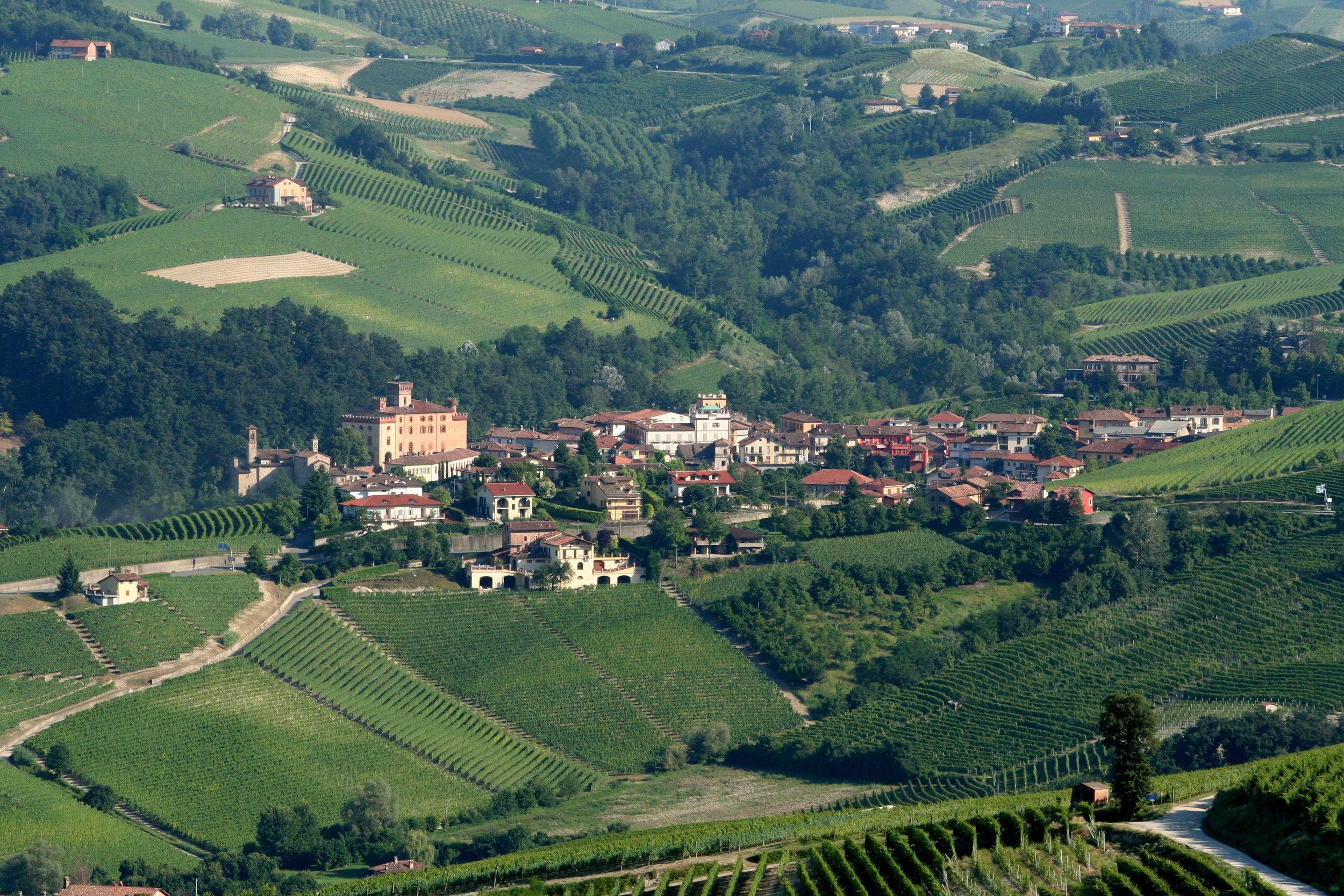 Barolo_-_view_from_La_Morra_in_Piemonte,_Italy.jpg