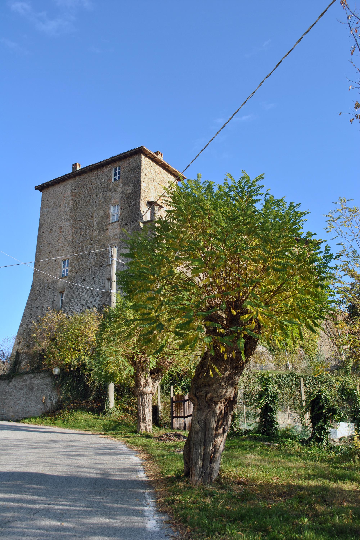 Borgomale1-1.jpg