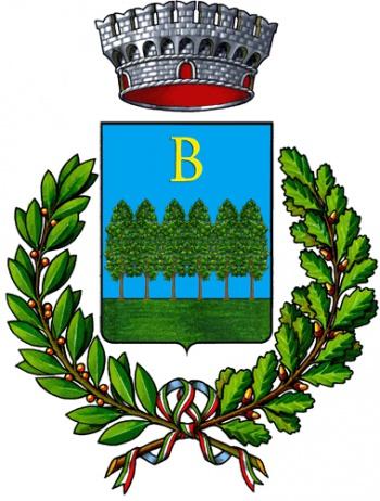 VISIT BOSIA -