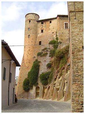 castiglione falletto comune langhe e roero piemonte turismo in langa percorsi nelle langhe vini piemonte  cultura.jpg