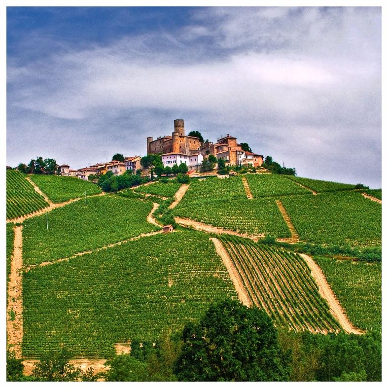 castiglione falletto comune langhe e roero piemonte turismo in langa percorsi nelle langhe vini piemonte  agriturismi tipici.jpg