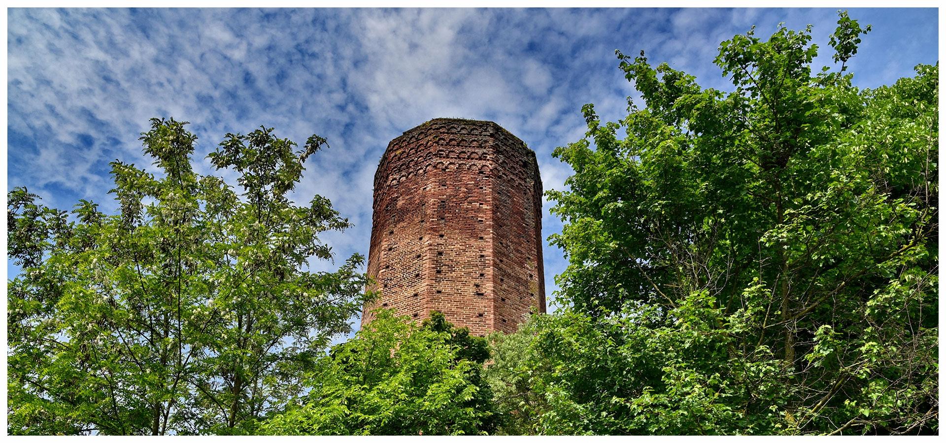 torre-di-corneliano d'alba langhe e roero comune piemonte turismo visita.jpg
