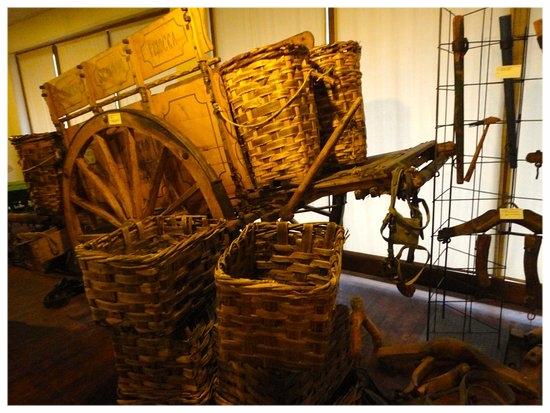 museo-della-civilta-contadina diano d'alba.jpg