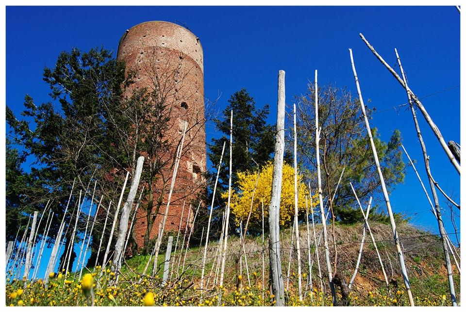la-torre-di-montaldo-roero.jpg