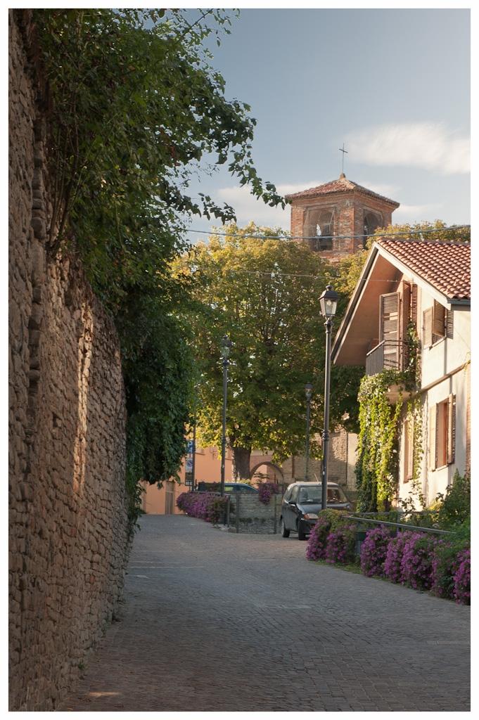 Paesaggio_di_Neviglie COMUNE LANGHE ROERO PIEMONTE TURISMO TOUR ITINERARI VISITA LE LANGHE CENTRI STORICI.jpg