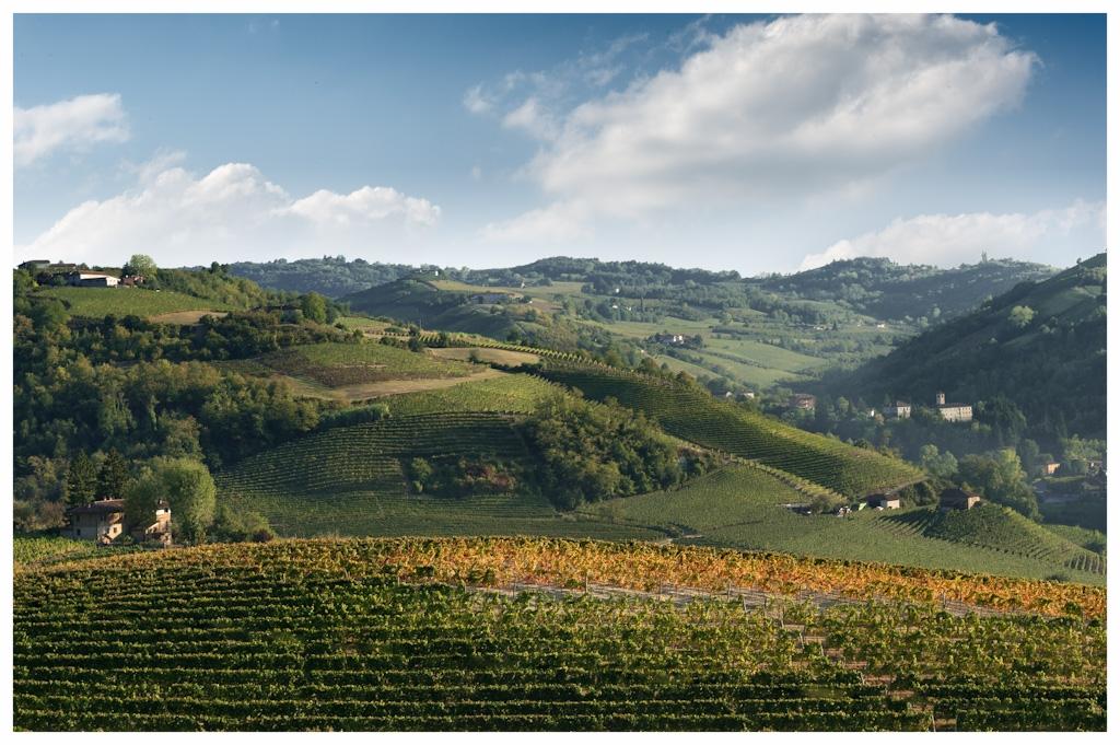Paesaggio_di_Neviglie COMUNE LANGHE ROERO PIEMONTE TURISMO TOUR ITINERARI VISITA LE LANGHE PANORAMI.jpg