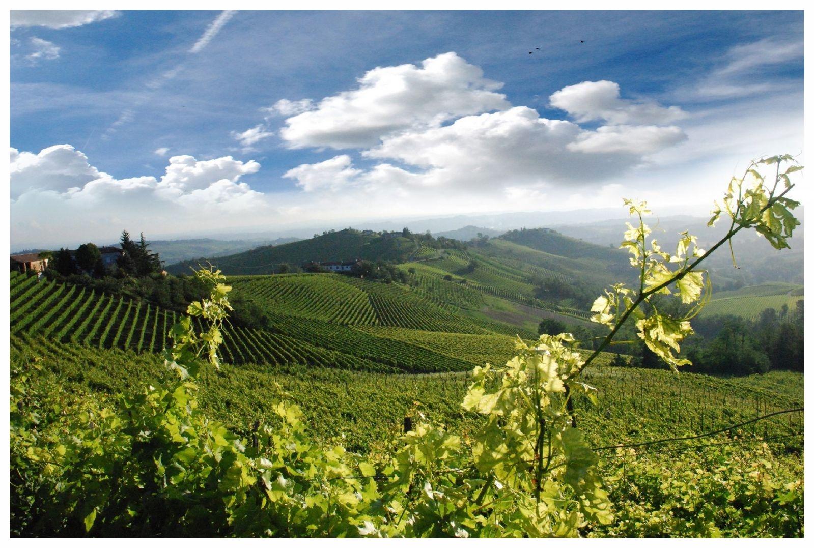 niella belbo piemonte cuneo langhe roero turismo visita tour percorsi itinerari cosa vedere monferrato.jpg