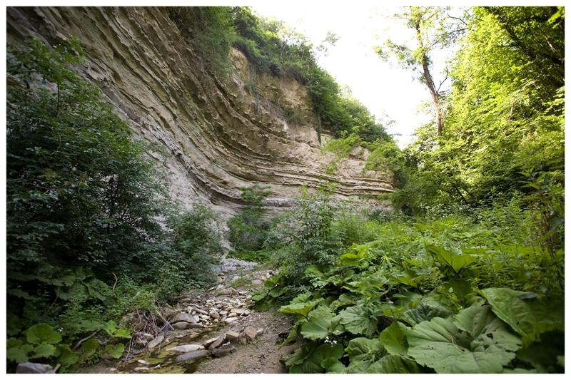 rocchetta belbo piemonte langhe e roero turismo visita percorsi itinerari.jpg