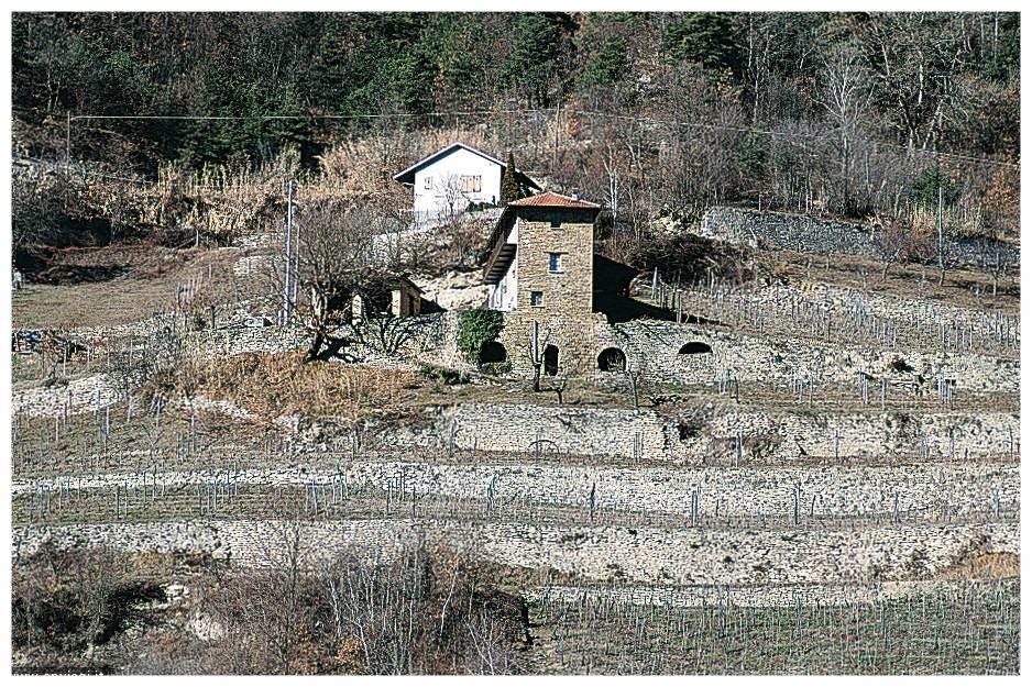 Rocchetta Belbo, casa di pietra con terrazzamenti ©LM.jpg