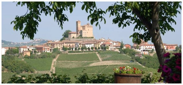 Serralunga-dAlba-across-the-vineyards-from-the-Rivetto-winery1-590x274.jpg