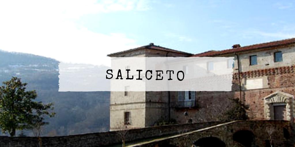 SALICETO