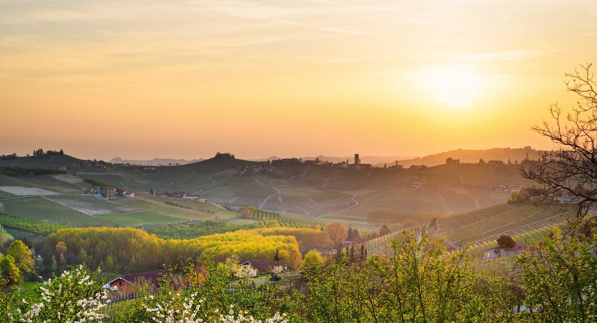 Il Territorio delle Langhe e del Roero è formato da aree di produzione di vini di eccellenza e qualità internazionale, conosciuti e amati in tutto il Mondo e diventati famosi grazie al loro sapore immediatamente riconoscibile e alla qualità superiore delle uve coltivate e utilizzate nella loro produzione -