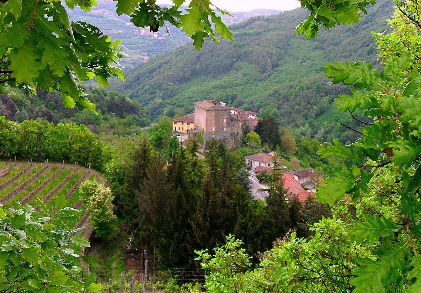 """""""Da verdi colline circondata, in un piccolo borgo son situata, di origine medioevale è il paese di Borgomale"""" -"""