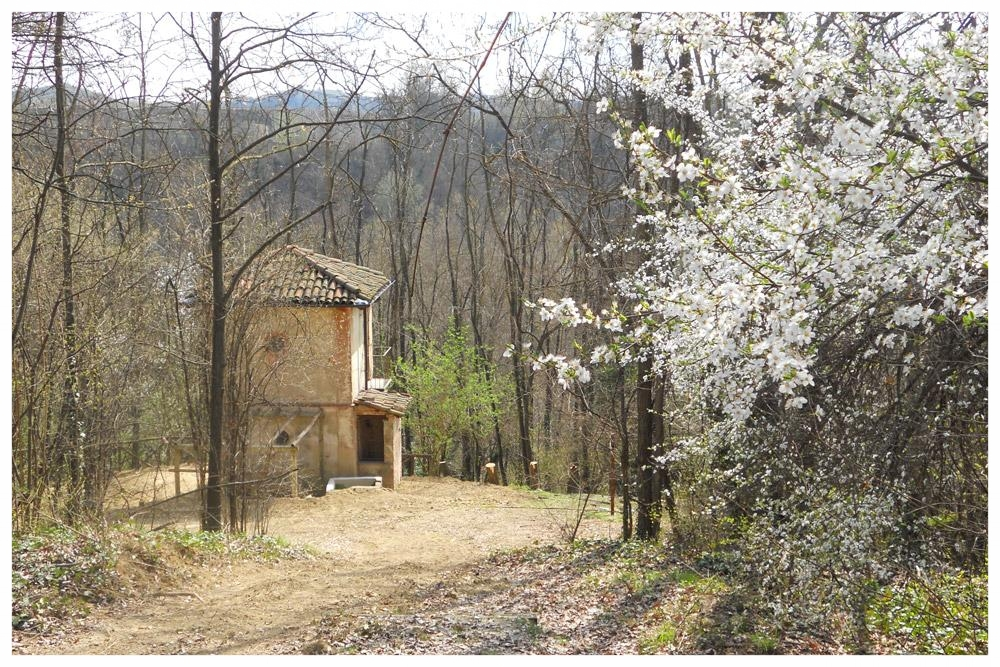 sentieri percorsi itinerari langhe e roero percorso apicoltura .jpg