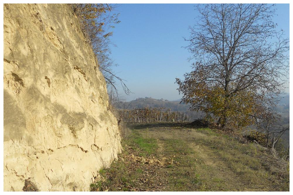 sentieri percorsi itinerari langhe e roero percorso apicoltura montà cuneo.jpg
