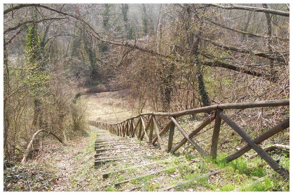 sentieri percorsi itinerari langhe e roero percorso apicoltura montà.jpg