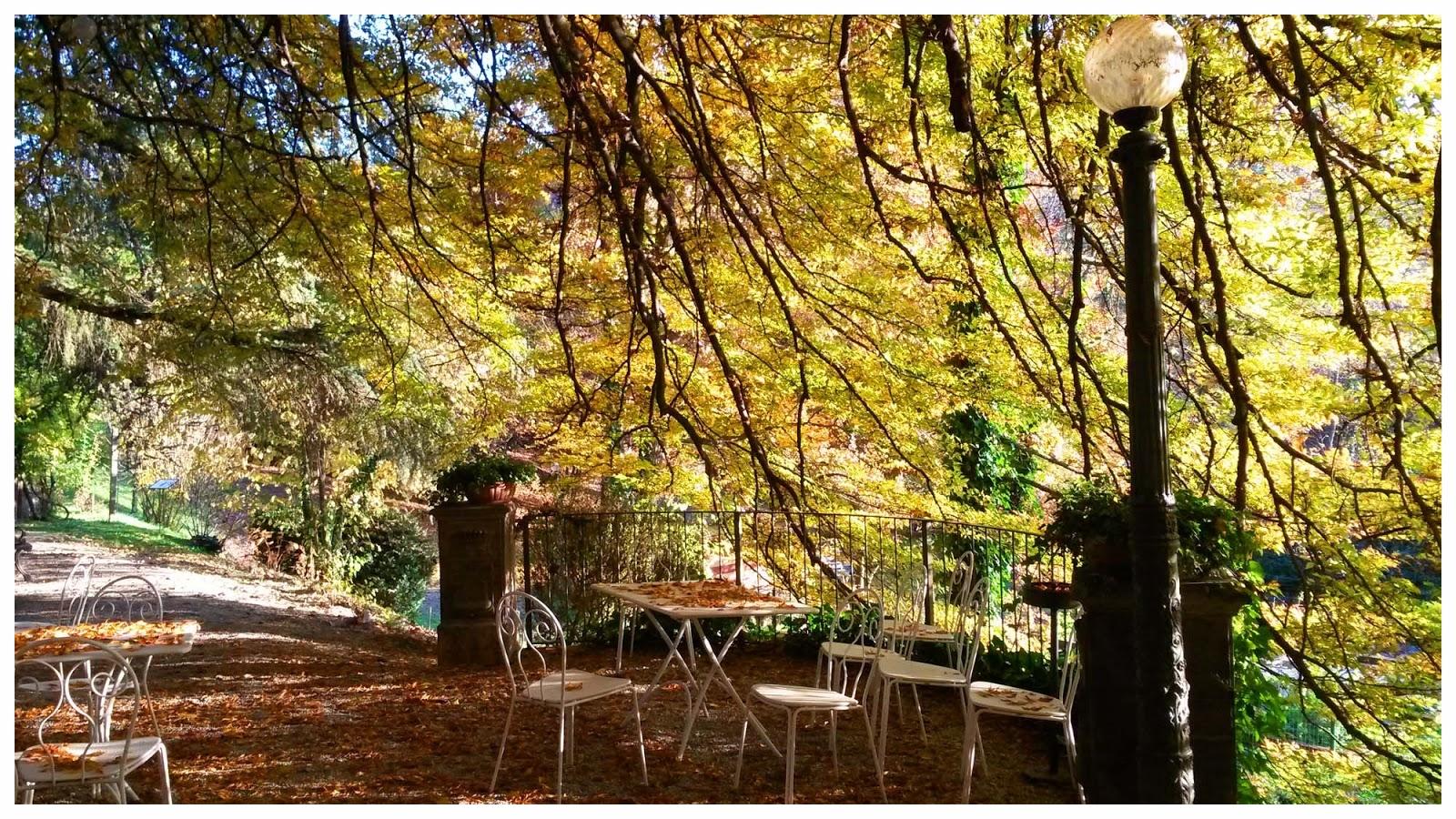 sentieri percorsi itinerari langhe e roero langa romantica bosco dei pensieri serralunga alba .jpg
