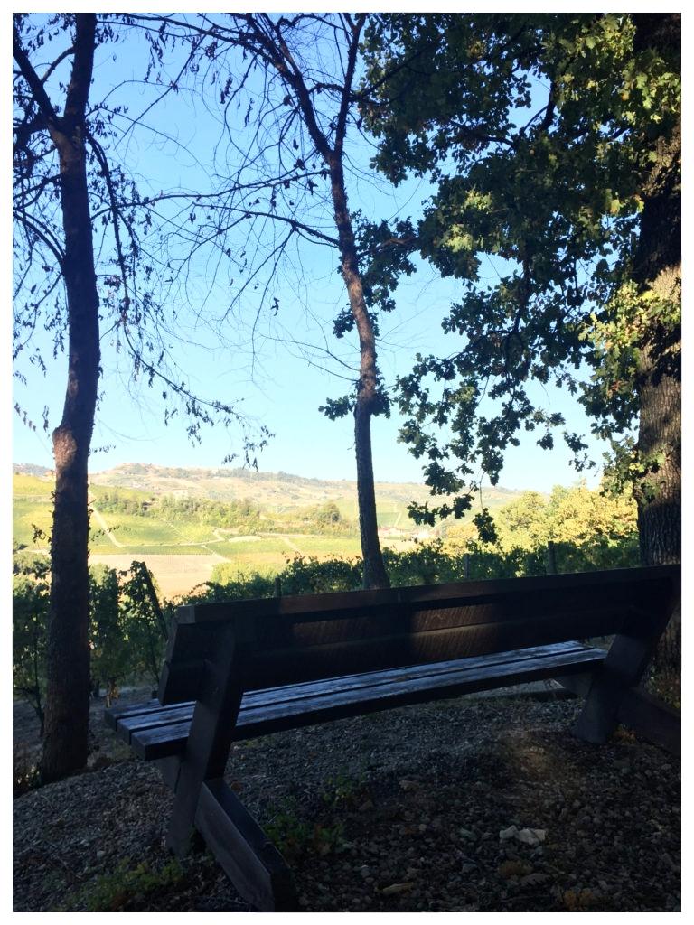 sentieri percorsi itinerari langhe e roero langa romantica bosco dei pensieri serralunga alba panorami love.jpg