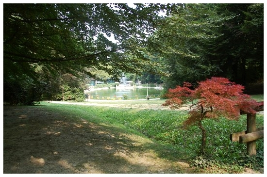 sentieri percorsi itinerari langhe e roero langa romantica bosco dei pensieri serralunga alba piemonte.jpg