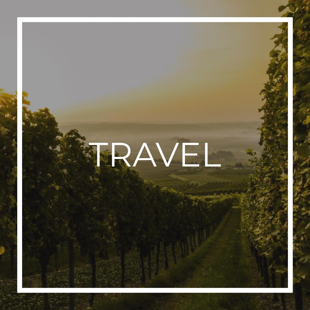 raggiungere langhe e roero percorsi tour turistici langhe roero vini degustazioni in cantina percorsi del vino arte design piemonte turismo walk nature natura percorsi boschi colline.jpg