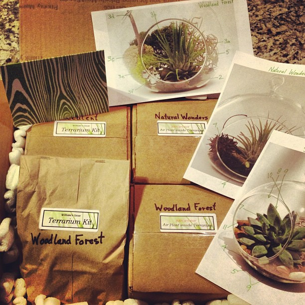 Can't wait to assemble my new terrariums from Williams's Grove on @etsy