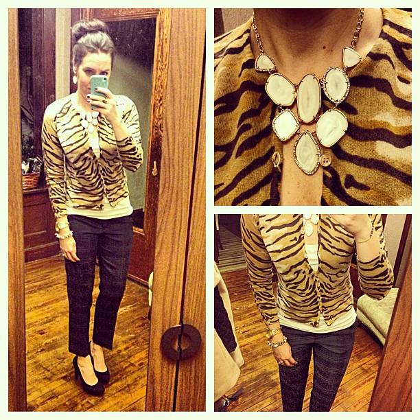 {dress} zebra plaid #ootd #wiw #personalstyle #selfie #jcrew #jcrewaddict #stelladotstyle #mixedprints #sweater #cafecapri
