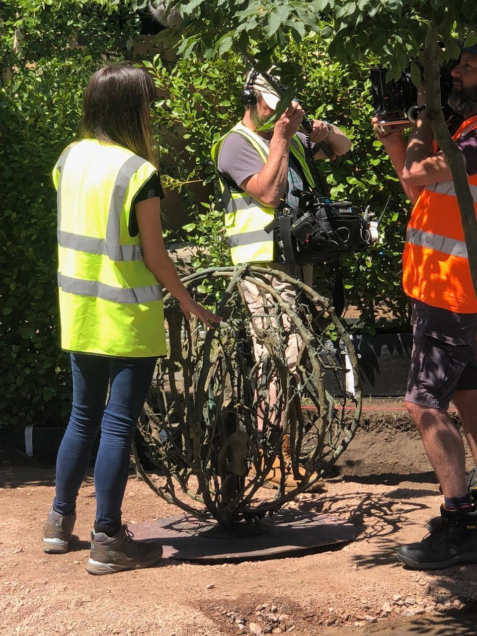 'Tumbleweed' in Alexandra Noble Garden (2).jpg