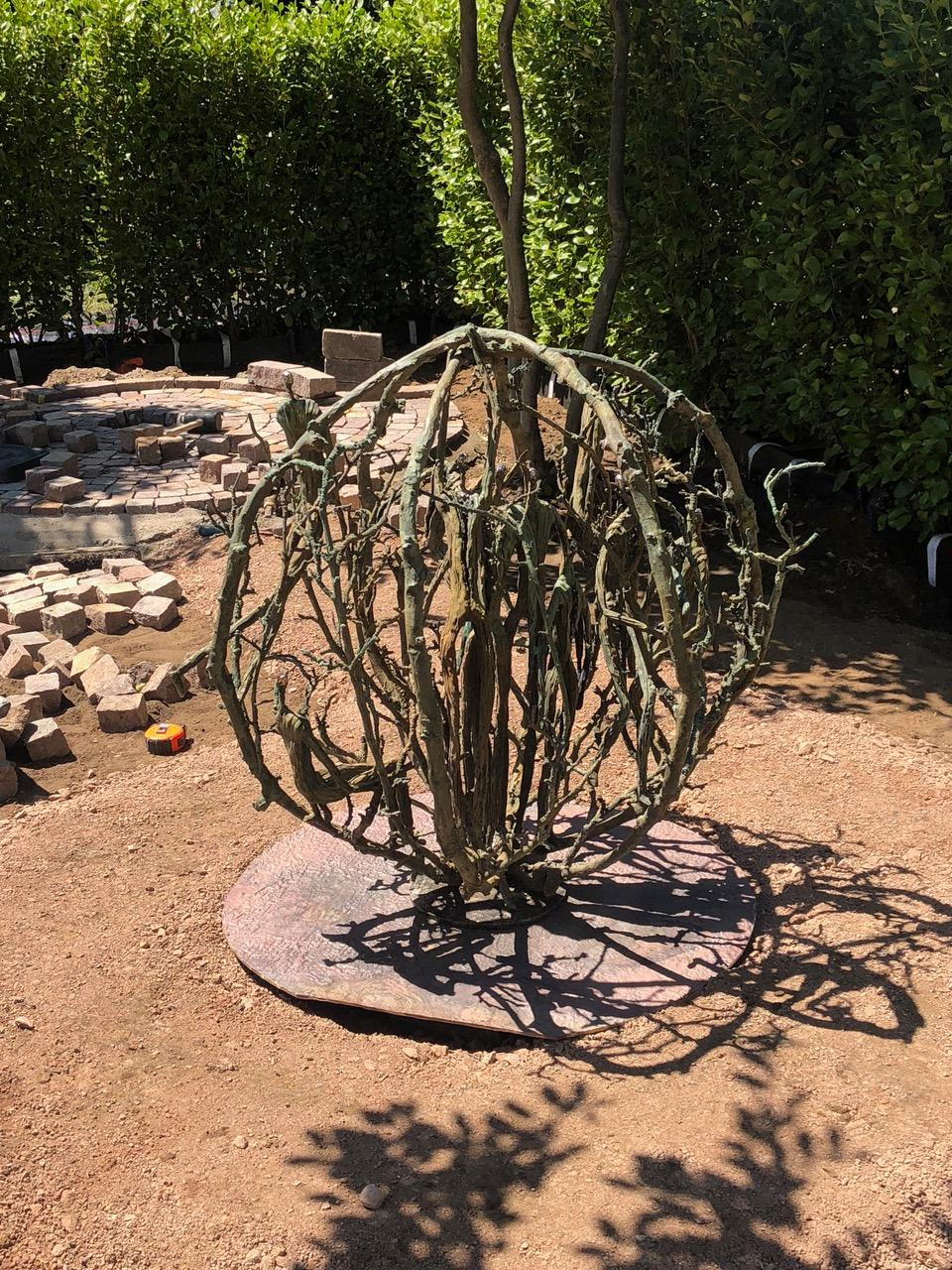 'Tumbleweed' in Alexandra Noble Garden (3).jpg