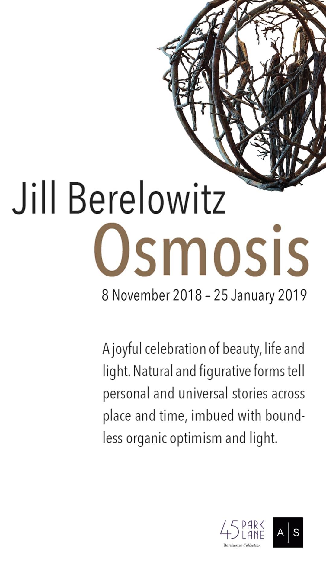 Jill Berelowitz Osmosis, Solo Exhibition.jpg