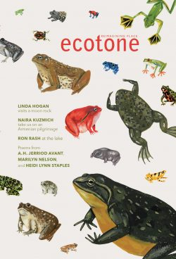 Ecotone-23-Cover-Online-250x368.jpg
