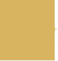 Morgan-Logo-gold2.png