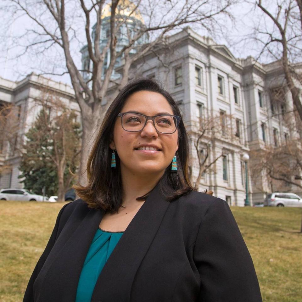Julie Gonzales, Candidate for Colorado Senate District 34 (W)