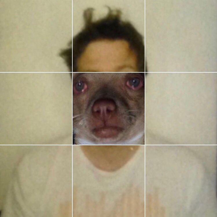Jake - Dog.jpg